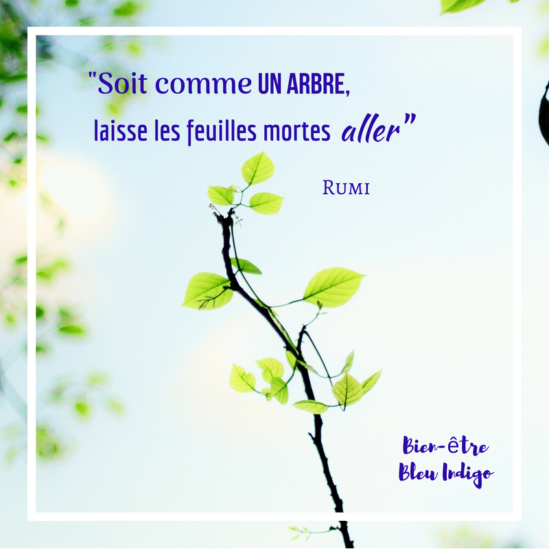citation de rumi